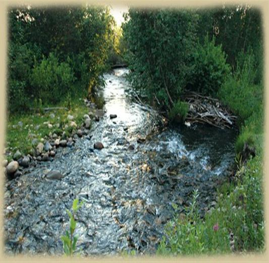 Little River at Peeples Quarter Horse Ranch - Salida, Colorado